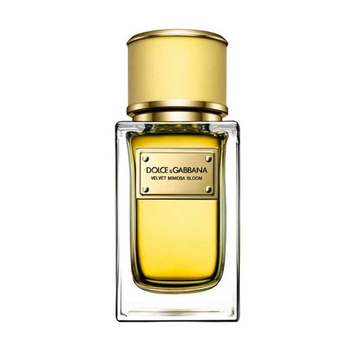 Dolce & Gabbana Velvet Mimosa Bloom for women